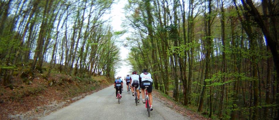 Dobrodelno kolesarjenje Trebnje